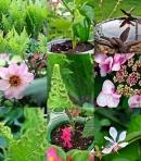 flowercombo
